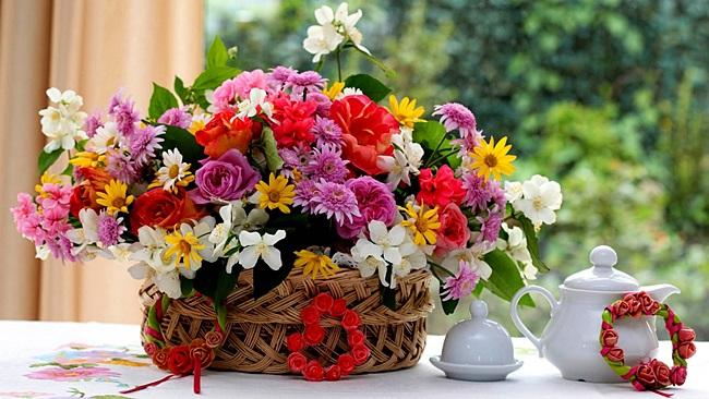 Найкрасивіші квіти в світі